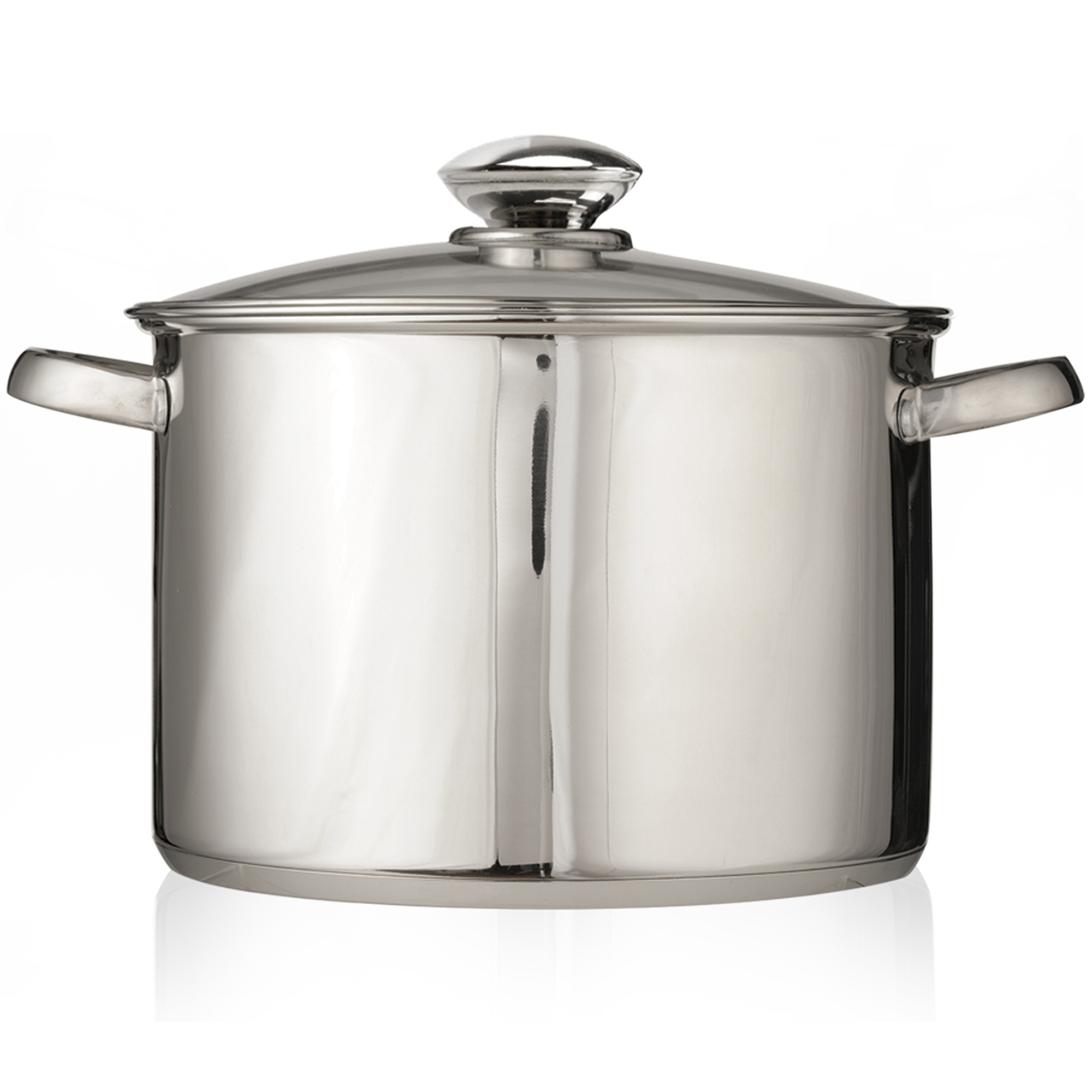 Ecolution  Estl4512 Pure Intentsions Steel Stock Pot With Lid
