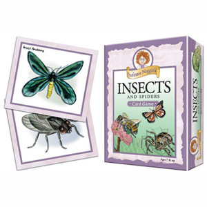 Prof Noggins Insects and Spiders