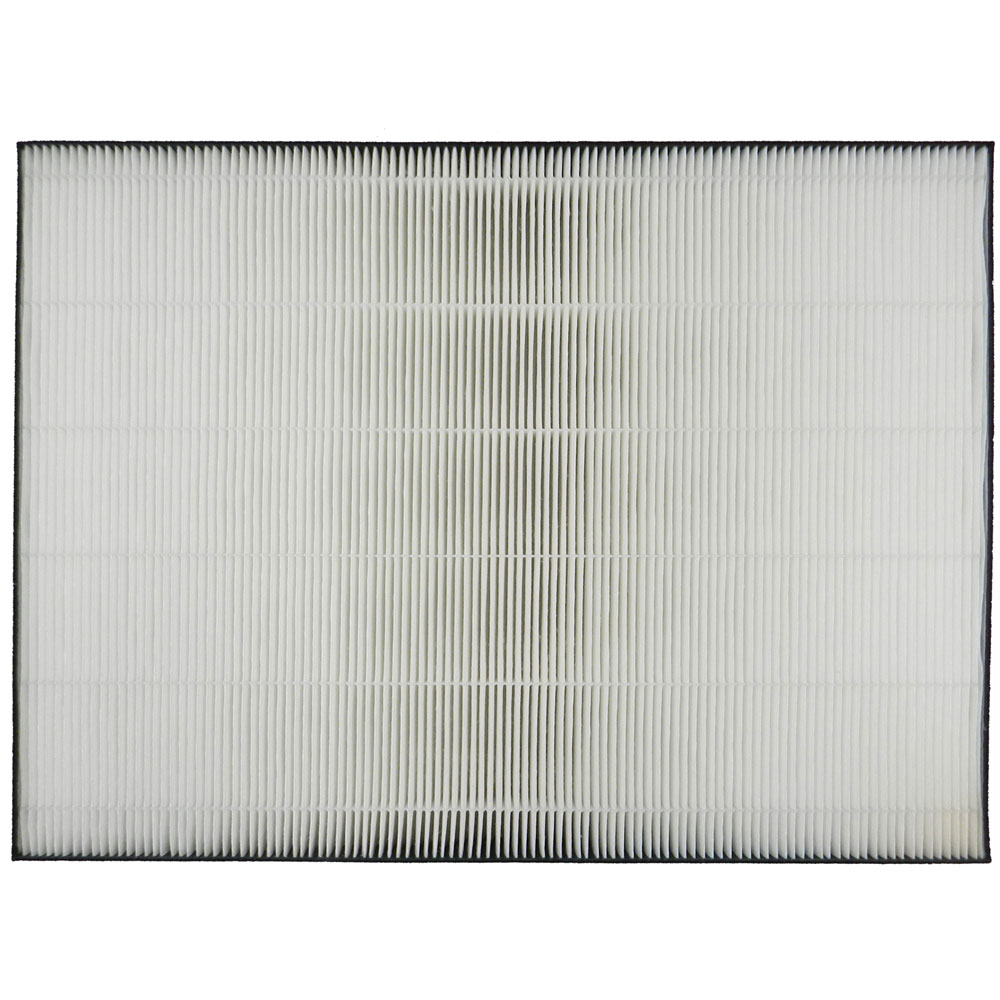 HEPA Filter Replacement for FP-A80UW