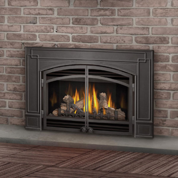 only gdi 30nsb napoleon direct vent gas fireplace insert 629169015047 gdi 30nsb napoleon. Black Bedroom Furniture Sets. Home Design Ideas